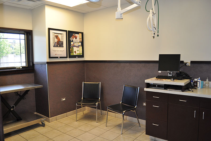 Our exam rooms are inviting and roomy for our larger patients and....